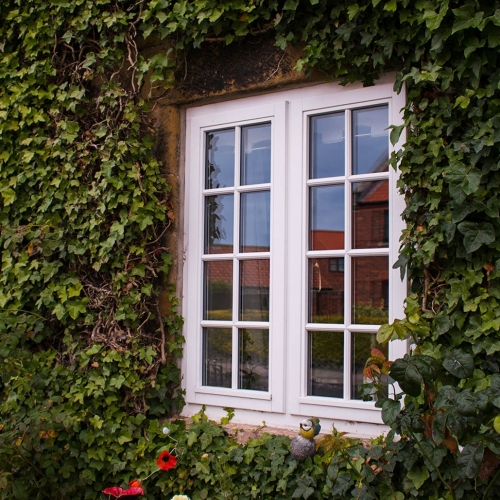 uPVC vs timber windows – which is best for your home? Product Image